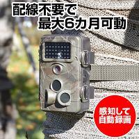 トレイルカメラ「防水&最長6ヶ月監視/配線不要/赤外線暗視(不可視)/人感センサー/2.4型液晶」